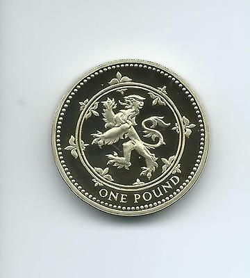 1999 Royal Mint Proof £1  taken from Royal Mint proof Set