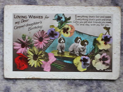 Old Postcard Of Granddaughters Birthday Flowers Dogs Unposted In Good Condition