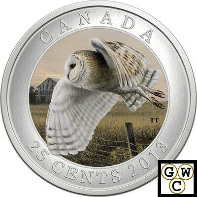 2013 'Barn Owl' Colorized 25-Cent Coin Oversized (13257)