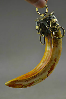 Lion a package boar tooth enamel antique town house to ward off bad luck