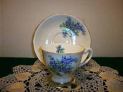 Vintage  Windsor  Bone China Cup and Saucer