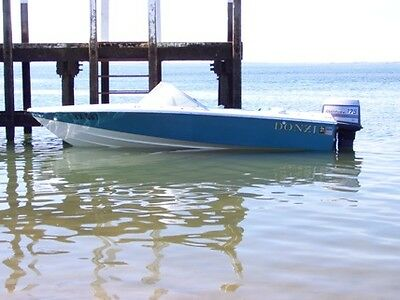 Donzi 16 outboard