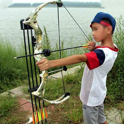 Archery 20lbs Junior Compound Bow Riht Hand Youth Target Hunting Arrows Set Kit