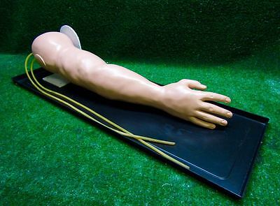 Global Technologies Deluxe IV Injection Training Arm Simulator 120
