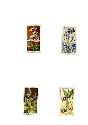 Will's Cigarette Cards - Spares - Wild Flowers - No's 2 15 17 32