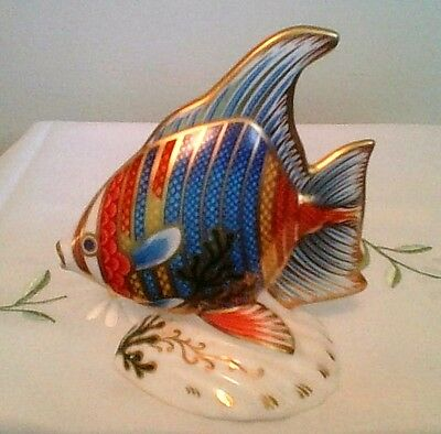 """ROYAL CROWN DERBY  """"Pacific Angel Fish"""" Paperweight  Original Box  As New Cond."""