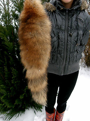Genuine Red Fox Tanned Tail Fur Taxidermy