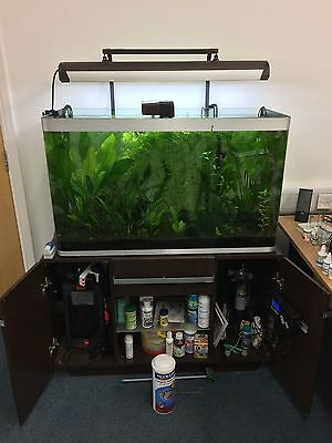 Fluval Osaka 260L Tank and Accessories