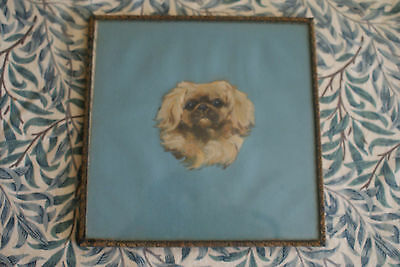 Pekingese Head Painted On Silk