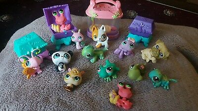 littlest pet shop from 2003 and 2004