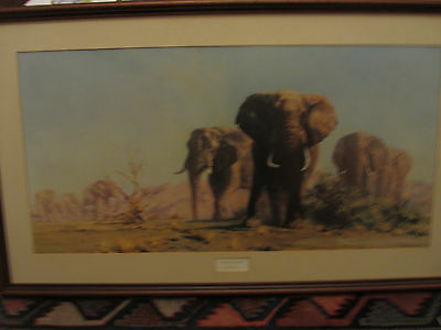 the ivory is theirs by david shepherd OPEN EDITION print framed & glazed