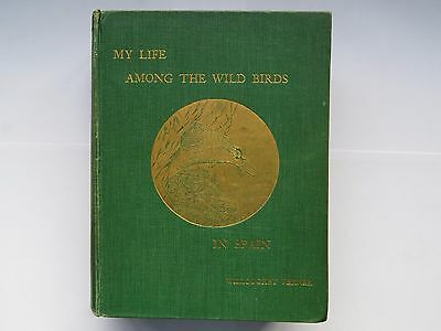 My Life among the Wild Birds in Spain by Willoughby Verner, signed copy, 1909