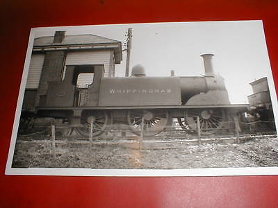 """LOCO PHOTO  LBSC  / SOUTHERN RLY 0-4-2T  """"D1"""" CLASS  LOCO No 295 """"WHIPPINGHAM"""""""