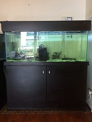 200L Fish Tank ALL ACCESSORIES INCLUDED