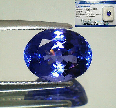 Tanzanite  D-Block In Blister Gemmologico Vvs If 3,14 Ovale