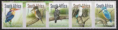 South Africa 2016 MNH Birds - Kingfisher strip of 5 / Self adhesive