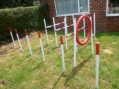 dog agility jump hurdle weave set training obetience exercise fun equipment