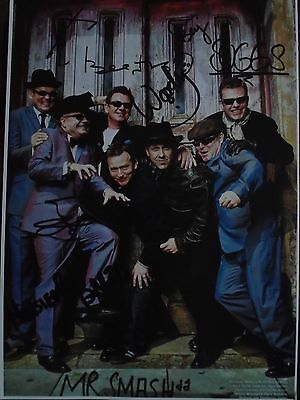 Autographed A4 Print of Iconic Ska Band Madness - Signed by all Members
