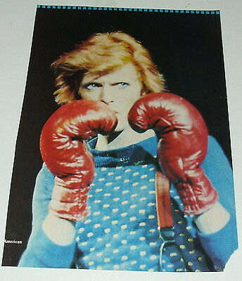 DAVID BOWIE - Twelve Vintage Original 1970's & 1980's Picture  Poster Pull outs