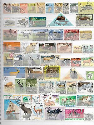 Animals On Stamps Superior Thematic Topical Collection 8290916