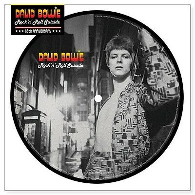 """David Bowie Rock'n Roll Suicide Rare 7"""" Vinyl Picture Disc Rsd Limited Edition"""