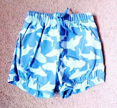 Boys Swimming Shorts 0-3 months Sharks only used once blue