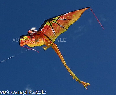 Fire Dragon kite 6Ft  Windsock Kite c/w line rig for vw show & festy fave
