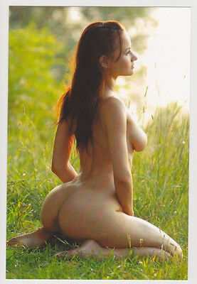 Postcard Nude Sexy Girl Pinup Bare Butt Topless Breast Kneeling Post Card 6624