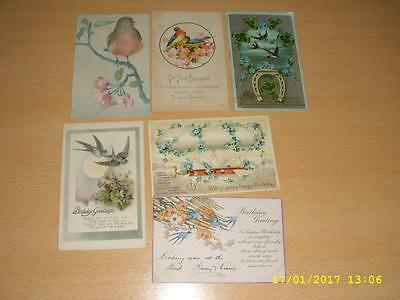 Colourful Birds   - Collection Of Vintage Greeting  Postcards