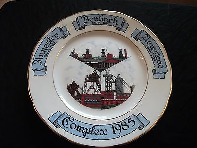 Rare Collectable 1985 Annesley,bentinck & Newstead Complex  Miners Plate