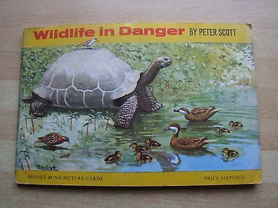Brooke Bond. 'wildlife In Danger' Full Album Of Cards.