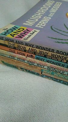 vintage How and Why books (9) childrens illustrated home school books