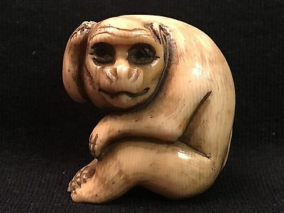 FINE CARVED Japanese 19th C NETSUKE Signed Monkey With Dark Glass Looking Eyes