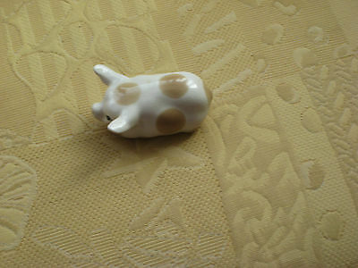 Small Szeiler  Pig White With Beige Spots