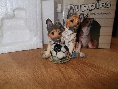 1 X Country Artists Alsation Puppies, Match Of The Day, New Boxed Bargain Start.