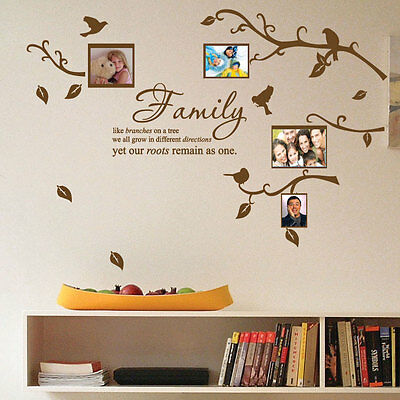 Family Tree Bird Photo Frame Nursery Art Wall Stickers Quotes Wall Decals 34