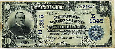 1902 $10 WM McKINLEY NATIONAL CURRENCY CAYUGA COUNTY AUBURN NY  ~REPRO~