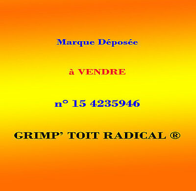 Marque déposée n° 15 4235946 (French Trademark for sale)