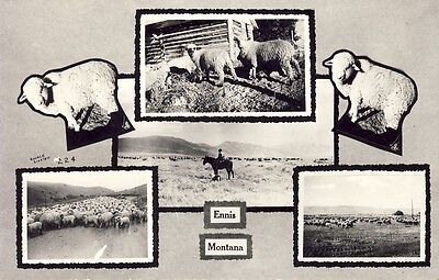 ENNIS MONTANA SHEEP RANCHING MULTI VIEW circa 1930s RPPC Photo Postcard