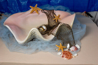 Sea - Shell  Baby Photography Posing Prop