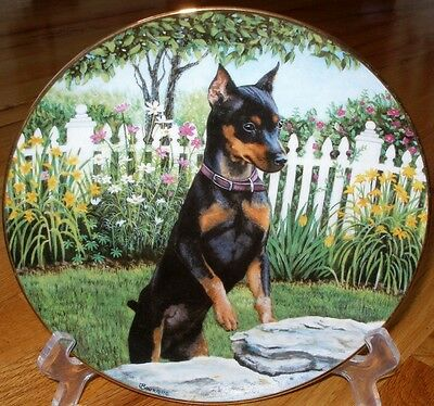 Danbury Mint Miniature Pinschers Min Pin SNEAKING A PEEK Limied Plate + COA