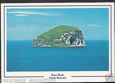 Scotland Postcard - Bass Rock, North Berwick    RR1208