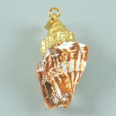 Natural Conch Pendant Bead With Gold Plated Cap T023833