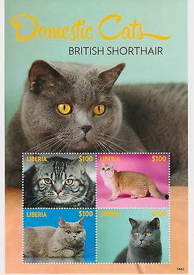 Liberia - Domestic Cats, British Shorthair, 2014 - 1440 Sheetle