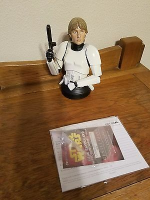 Gentle Giant Star Wars Bust Luke Skywalker in Stormtrooper disguise