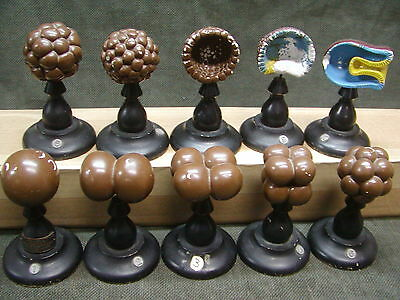 Vintage Jewell 10pc Set Biological Cell Growth Model, Models