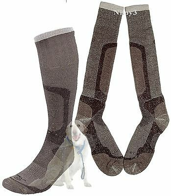 Lorpen T2 Hunting Extreme Socks - Over the Calf-Heavy Cushion XL