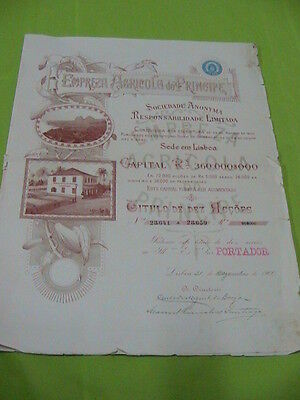 Agricultural company Prince 1900 - ten share certified