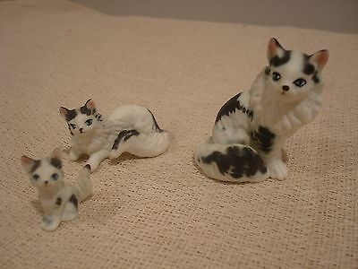 Lovely set of miniature black and White Cats vgc