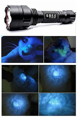 Professional Wood's Lamp Blacklight for pets dog cat fungal infection diagnose